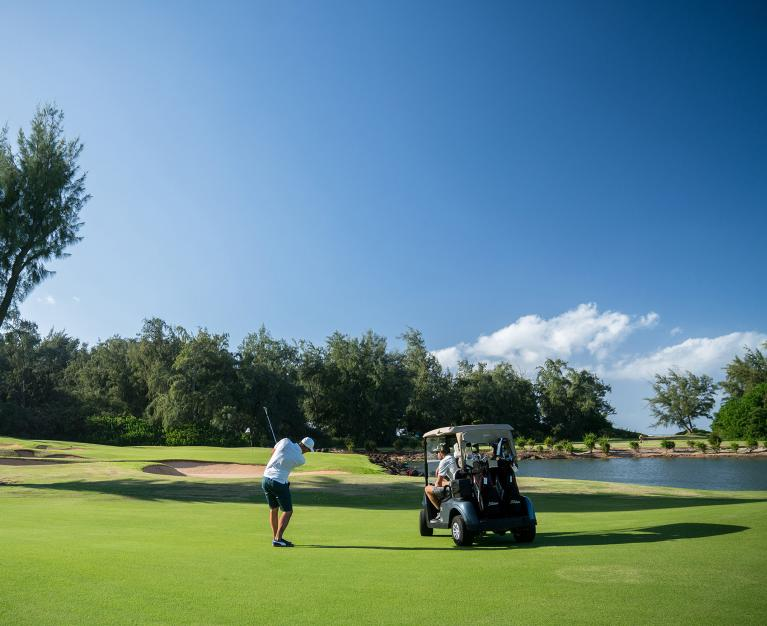 Golfers on Turtle Bay course green